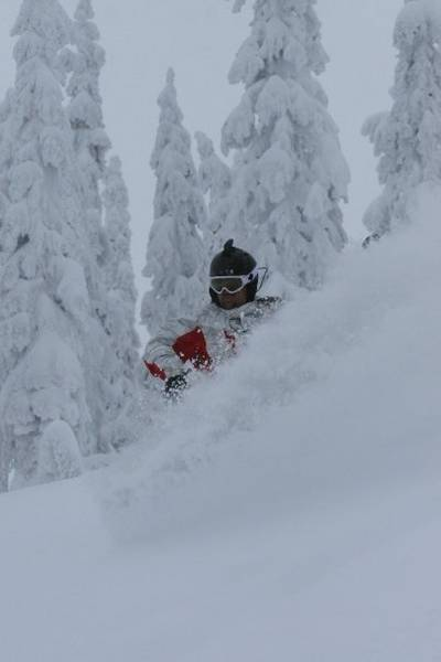 FERNIE WILDERNESS CATSKIING