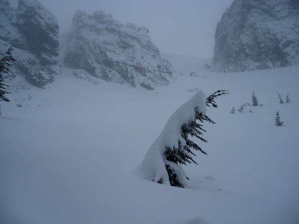 Gray, snowy photos...