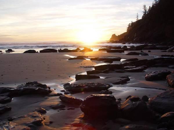 Smuggler Cove - Oregon Coast