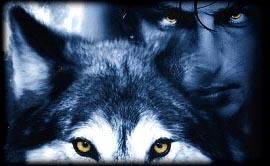 234536trium-wolf
